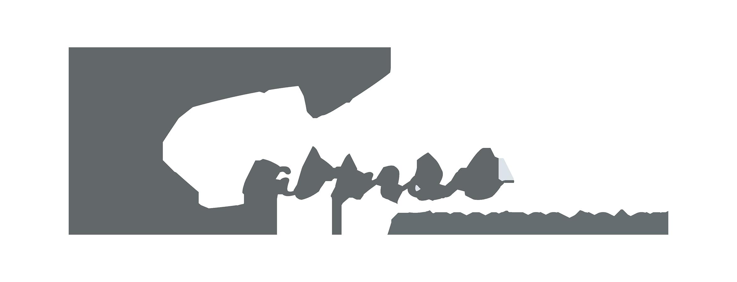 Carmen Turlea > La Tua Coach del Benessere